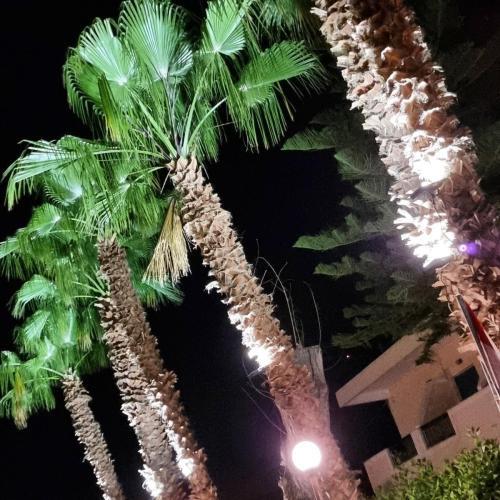 Apollon Beach Hotel